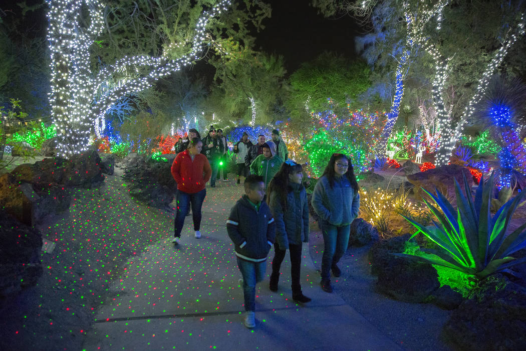 Holiday goers enjoy the lights at Ethel M Chocolates Botanical Cactus Garden on Monday, November 12, 2018, in Henderson. Benjamin Hager Las Vegas Review-Journal