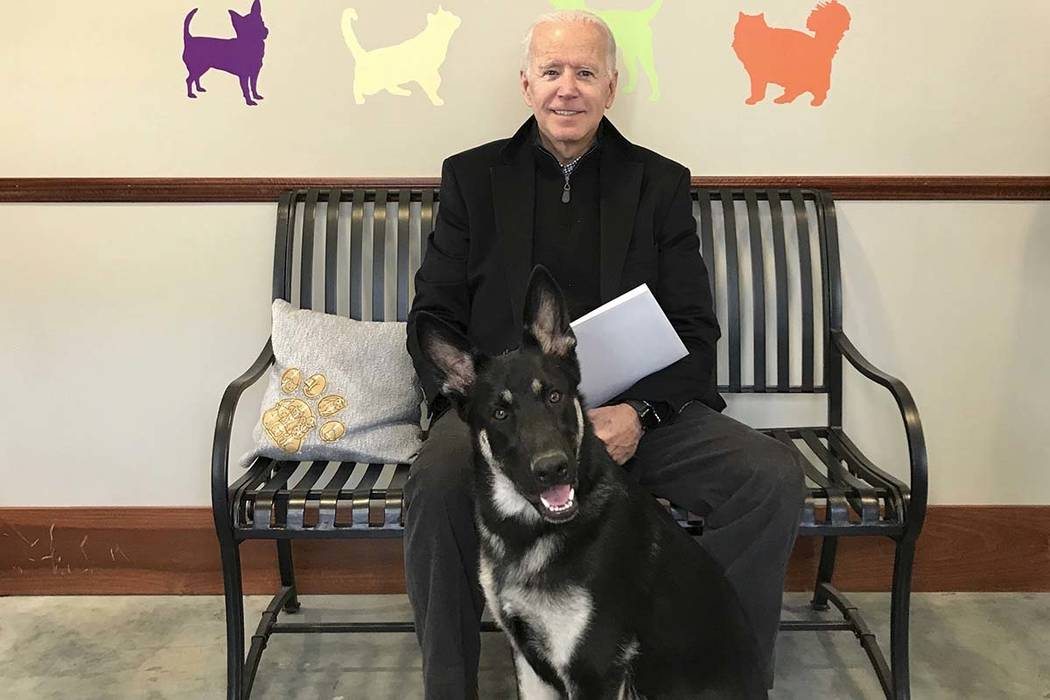 This photo provided by Delaware Humane Association shows former Vice President Joe Biden with his new dog at Delaware Humane Association in Wilmington, Del. The Delaware Humane Association said S ...