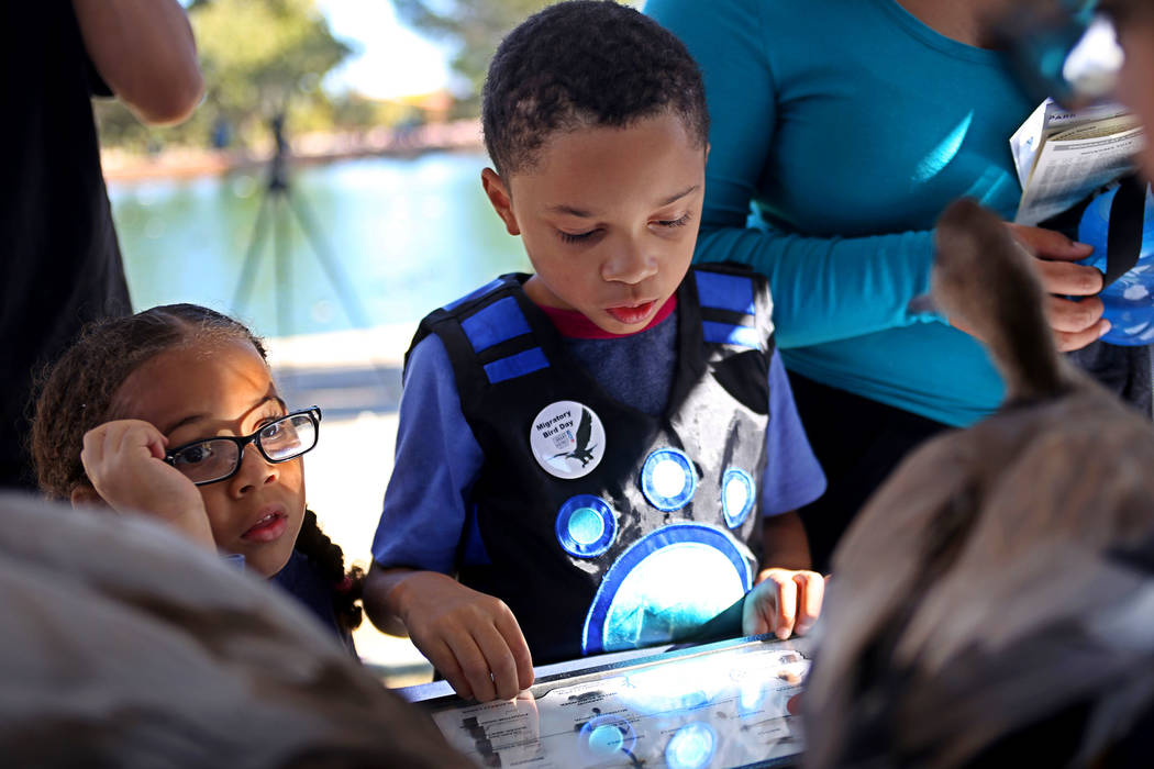 Isla Hunter-Roy, 4, listens next to her brother Jasper Hunter-Roy, 7, at a booth at Migratory Bird Day at Sunset Park in Las Vegas, Sunday, Nov. 18, 2018. Different organizations offered activitie ...