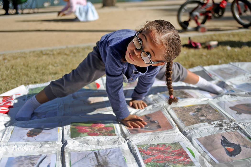 Isla Hunter-Roy, 4, plays Twister with images of animals and plants to learn about birds at a booth at Migratory Bird Day at Sunset Park in Las Vegas, Sunday, Nov. 18, 2018. Different organization ...