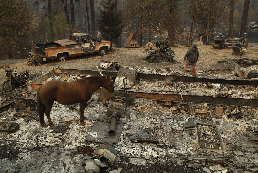 """In this Nov. 15, 2018, photo, Troy Miller looks through what remains of his burned out home as his horse Sally stands nearby in Concow, Calif. """"It just engulfed everything, went over us, arou ..."""