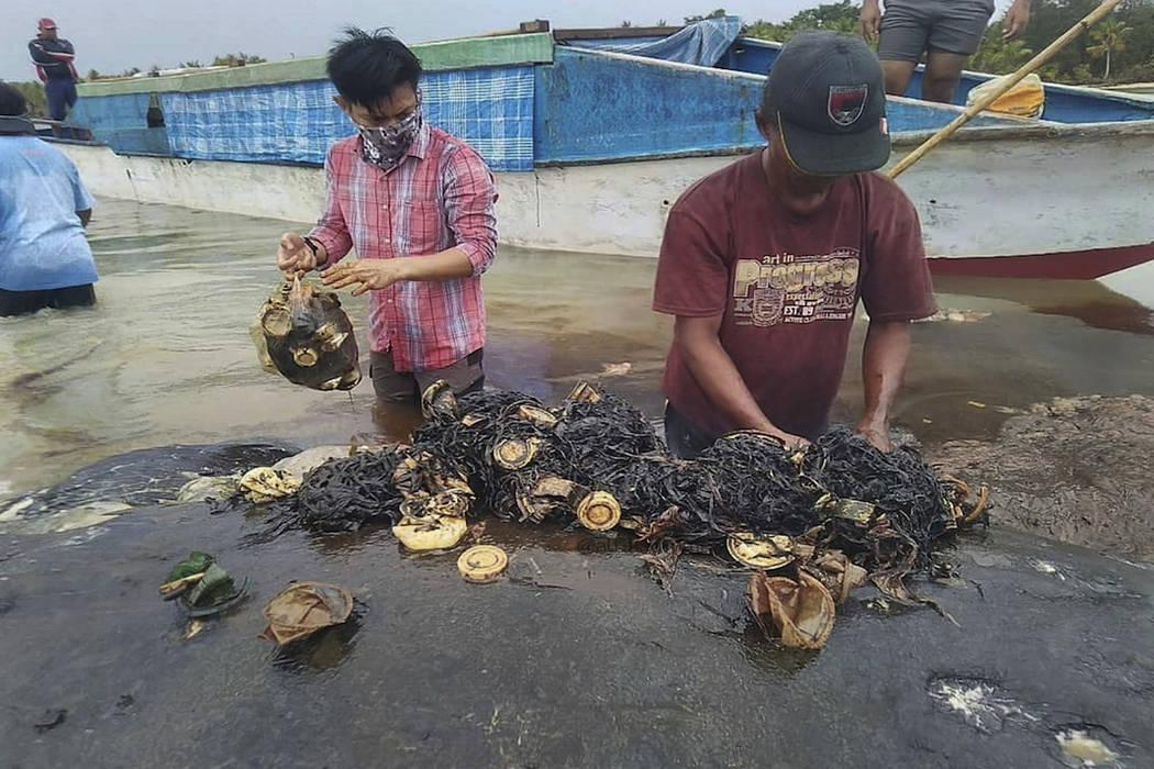 In this undated photo released by Akademi Komunitas Kelautan dan Perikanan Wakatobi (Wakatobi Marine and Fisheries Community Academy or AKKP Wakatobi), researchers remove plastic waste from the st ...