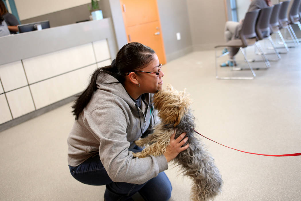 Admissions Counselor Maria Salazar gets a kiss from a lost dog at the Lost & Found lobby at The Animal Foundation in Las Vegas, Tuesday, Nov. 27, 2018. The Animal Foundation has begun using an ...