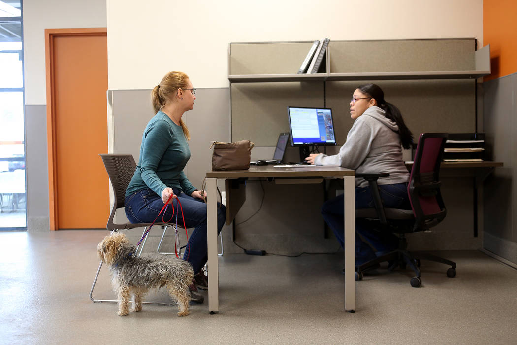 Jackie Morris, left, gets assistance from Admissions Counselor Maria Salazar to intake a dog she found at the Lost & Found lobby at The Animal Foundation in Las Vegas, Tuesday, Nov. 27, 2018. ...