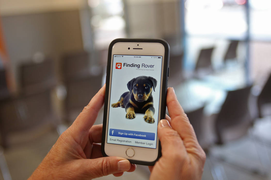 Spokesperson Kelly Leahy holds her phone showing an app called Finding Rover that The Animal Foundation has begun using to help connect lost dogs with owners at the Lost & Found lobby at the A ...