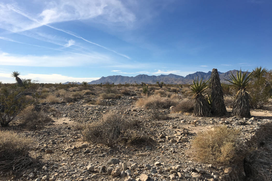 Station Casinos bought about 40 acres of land, some of which is seen here on Tuesday, Nov. 20, 2018, in Las Vegas' Skye Canyon community for $36 million. (Eli Segall/Las Vegas Review-Journal)