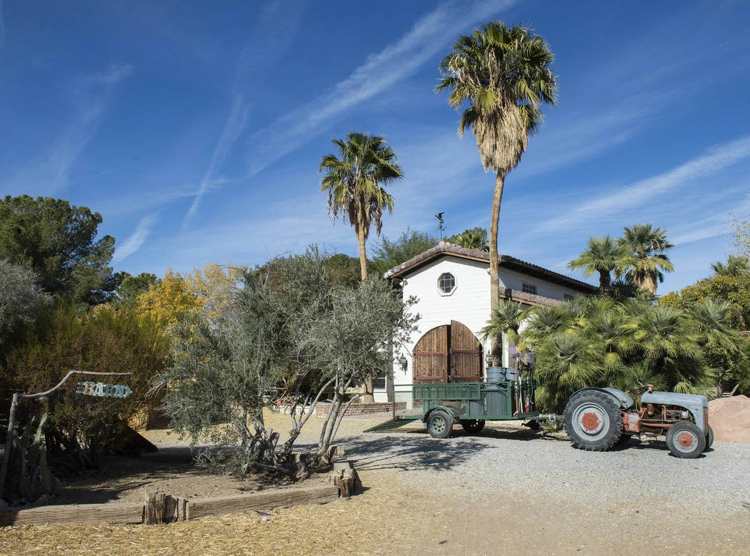 Barn Buddies Rescue, a non-profit dedicated to the rescue of abused, neglected or abandoned farm animals, is home to five acres of land at The Farm in Las Vegas, Sunday, Nov. 25, 2018. Caroline Br ...
