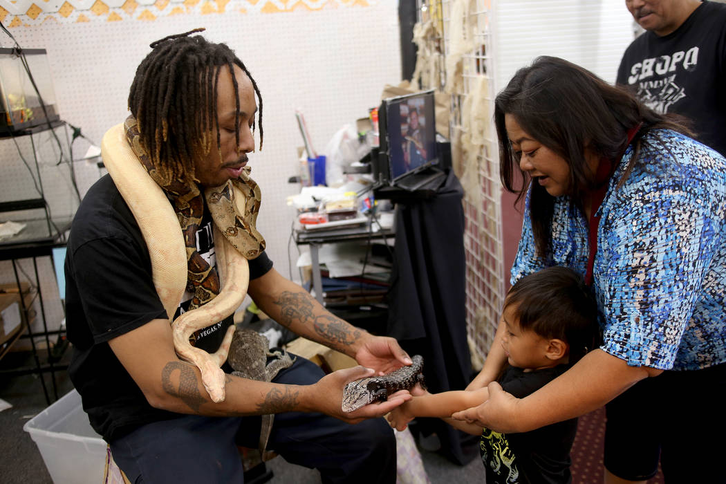 "Levon ""The Snake Man"" Holiday shows Carson Nashiro, 3, and his mother Kathy Nashiro a lizard at his booth at the Fantastic Indoor Swap Meet in Las Vegas, Friday, Nov. 2, 2018. Rachel Ast ..."