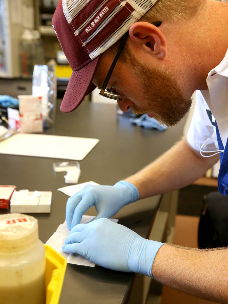 Matthew Anderson, a senior quality analyst at the City of North Las Vegas Water Reclamation Facility, plates a biological solid sample for viewing under a microscope Monday, Dec. 3, 2018. K.M. Can ...