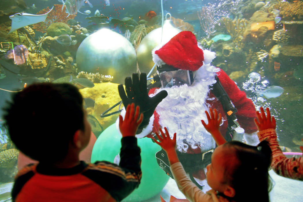 Underwater Santa high-fives William Chaidez, 3, at Silverton hotel and casino in Las Vegas, Sunday, Dec. 2, 2018. He and the Christmas mermaid are in the aquarium every Saturday and Sunday in Dece ...