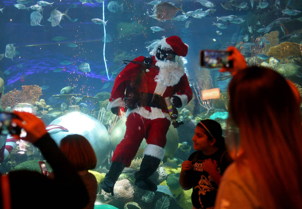 Underwater Santa greets the crowd at Silverton hotel and casino in Las Vegas, Sunday, Dec. 2, 2018. He and the Christmas mermaid are in the aquarium every Saturday and Sunday in December from 12 p ...