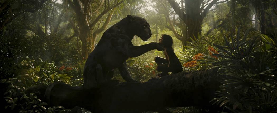 "Bagheera and Rohan Chand as ""Mowgli"" in the Netflix film ""Mowgli: Legend of the Jungle"" (Netflix)"