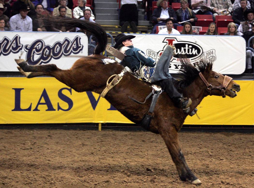 Cimmaron Gerke of Brighton, Colo., rides Dippin Wise Guy to a score of 90.5 to win the sixth go-around of the National Finals Rodeo at the Thomas & Mack Center in Las Vegas Wednesday, Dec. 8, 2004 ...