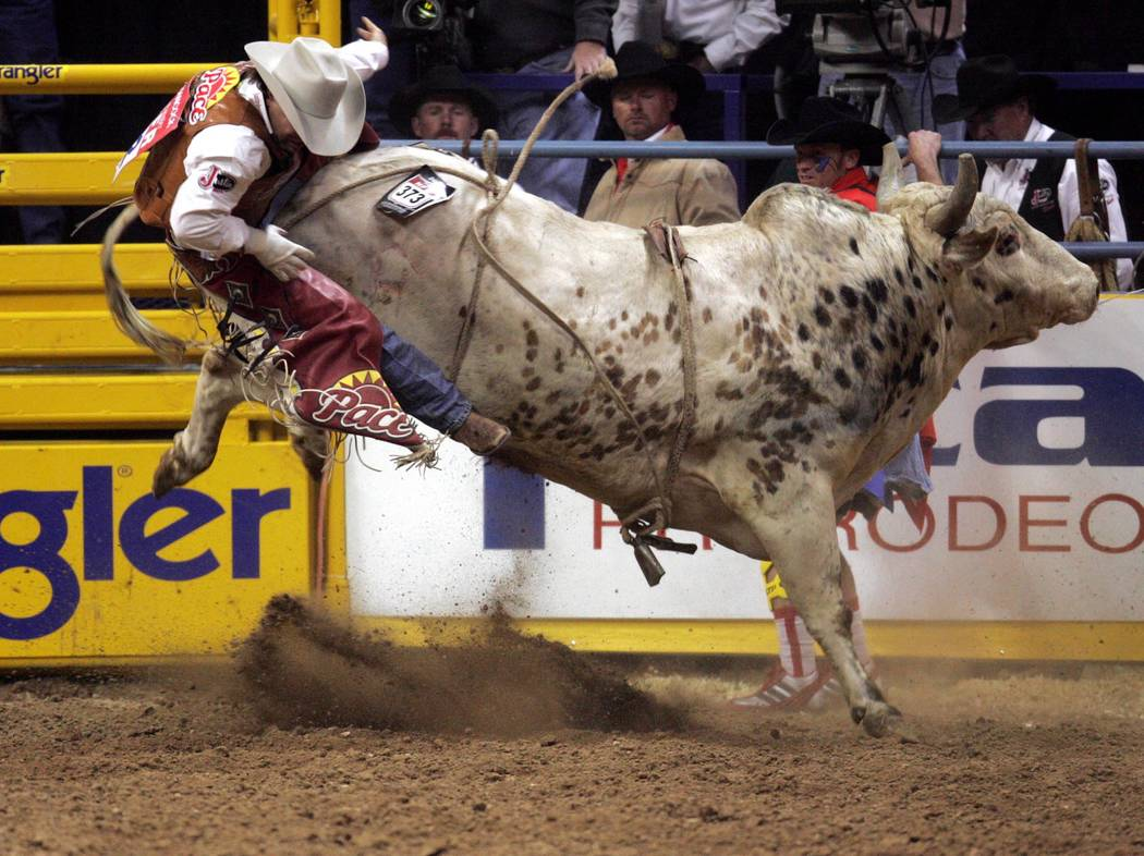 Cody Hancock of Taylor, Ariz. gets bucked off Speckled Bird in the first go-around of the 2004 Wrangler National Finals Rodeo at the Thomas & Mack Center Friday, Dec. 3, 2004. (K.M. Cannon/Las Veg ...