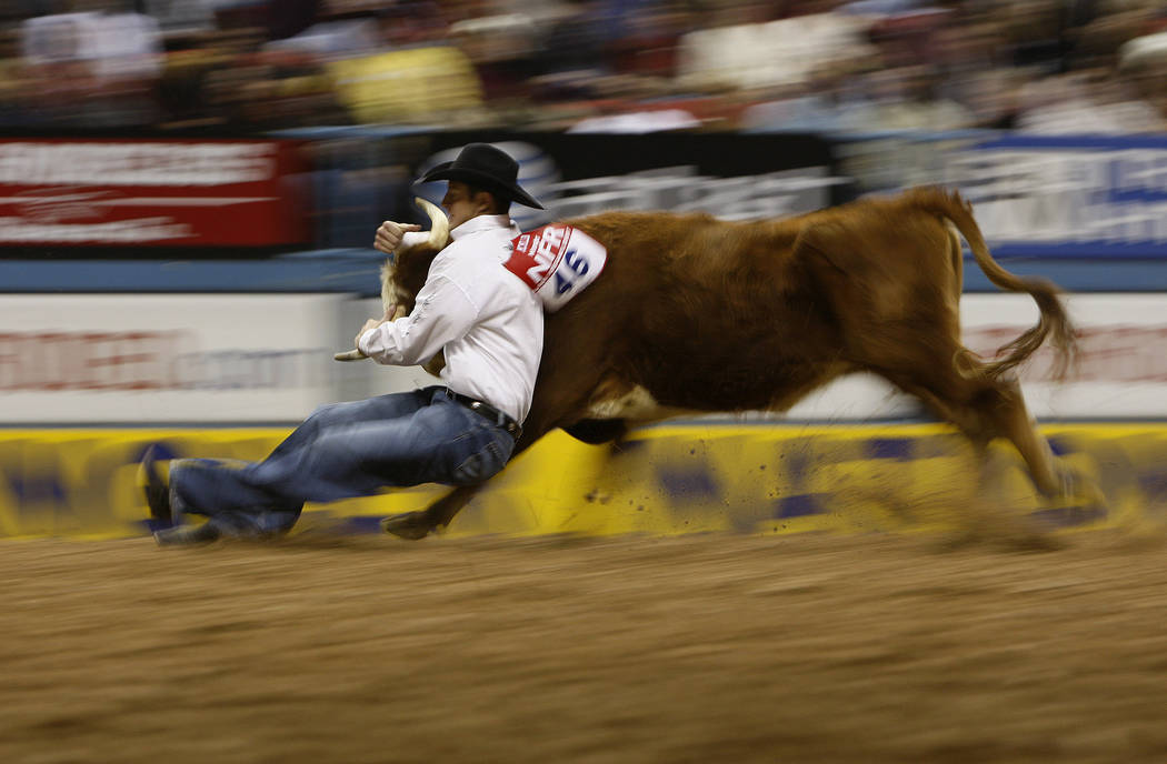 Casey McMillen takes down a steer in the Steer Wrestling event during the second night of the National Finals Rodeo in Las Vegas Friday, Dec. 7, 2007. (John Locher/Las Vegas Review-Journal)