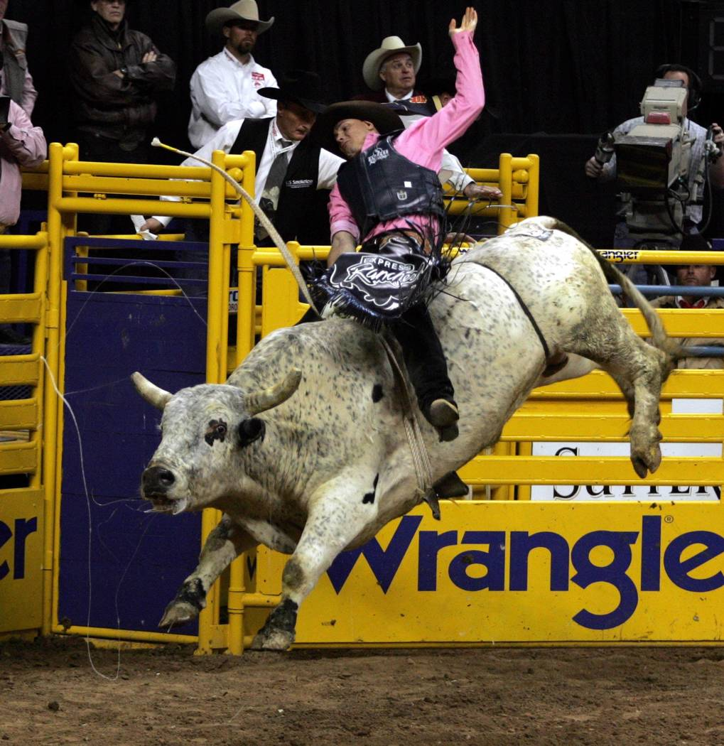Paulo Crimber of Haltom City, Texas, rides Werewolf Snuff in the fifth go-around of the National Finals Rodeo at the Thomas & Mack Center Tuesday, Dec. 7, 2004. Crimber scored a 59.5 with an optio ...