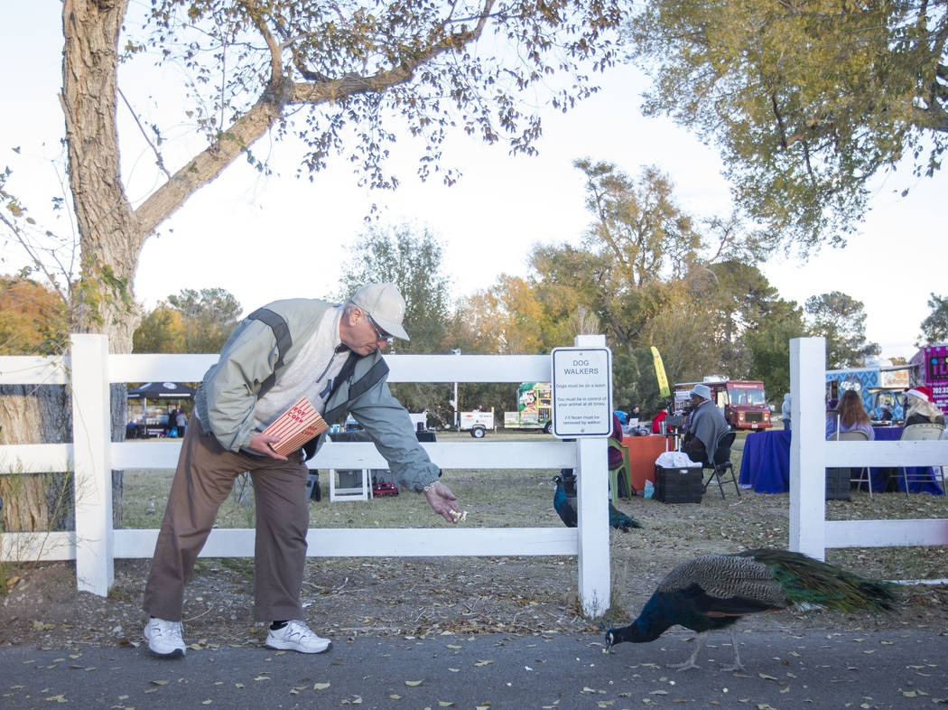 North Las Vegas resident Mike Lavoie feeds popcorn to a peafowl during Cowboy Christmas at Floyd Lamb Park at Tule Springs in Las Vegas on Saturday, Dec. 1, 2018. Richard Brian Las Vegas Review-Jo ...