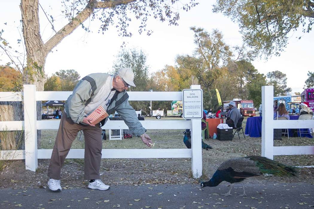 North Las Vegas resident Mike Lavoie feeds popcorn to a peafowl during Cowboy Christmas at Floyd Lamb Park at Tule Springs in Las Vegas on Saturday, Dec. 1, 2018. (Richard Brian/Las Vegas Review-J ...