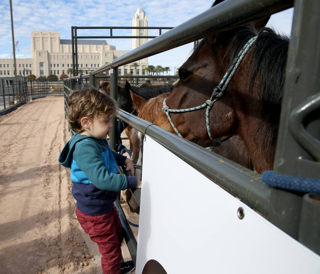 Noah Jossel, 2, son of Plaza CEO Jonathan Jossel, visits a horse after the opening of Core Arena at the Plaza in downtown Las Vegas Tuesday, Dec. 4, 2018. The permanent outdoor equestrian center w ...
