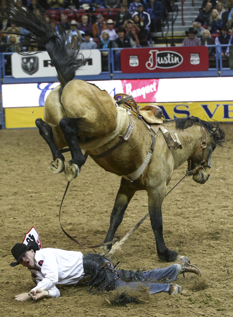 """Sterling Crawley of Stephenville, Texas gets bucked off of """"Copper Cat"""" while competing in saddle bronc riding during the opening night of the National Finals Rodeo at the Thomas & M ..."""