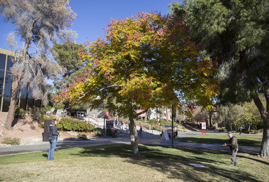 Andi Porreca, left, with the Nevada Division of Forestry, and Paul Dzerk, UNLV campus arborist, measure a Chinese Flame Tree on Thursday, Dec. 13, 2018, at UNLV, in Las Vegas. Benjamin Hager Las V ...