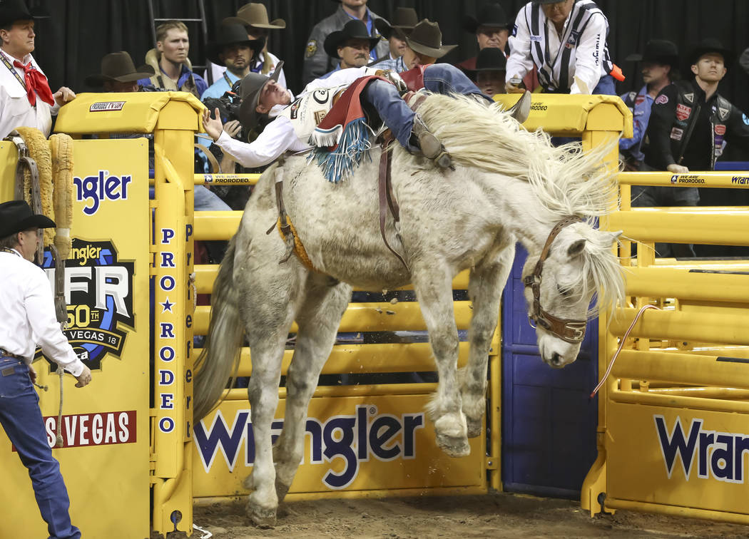 Tim O'Connell of Zwingle, Iowa competes in the bareback riding during the third go-round of the National Finals Rodeo at the Thomas & Mack Center in Las Vegas on Saturday, Dec. 8, 2018. Richar ...