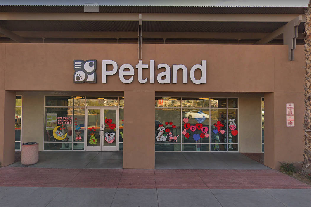 A Petland store at 8800 W. Charleston Blvd. in Las Vegas is seen in a screenshot. (Google)