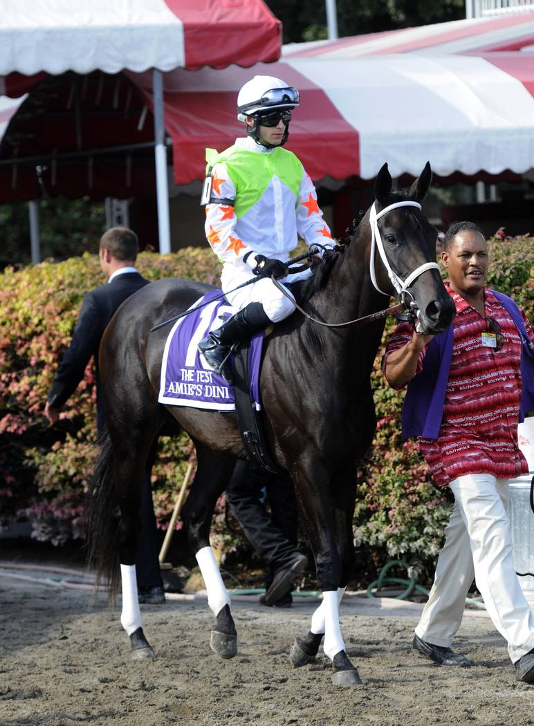 Amie's Dini with Jockey David Cohen during the post parade for the Test Stakes horse race at Saratoga Race Course in Saratoga Springs, N.Y., Saturday, Aug. 25, 2012. (AP Photo/Hans Pennink)