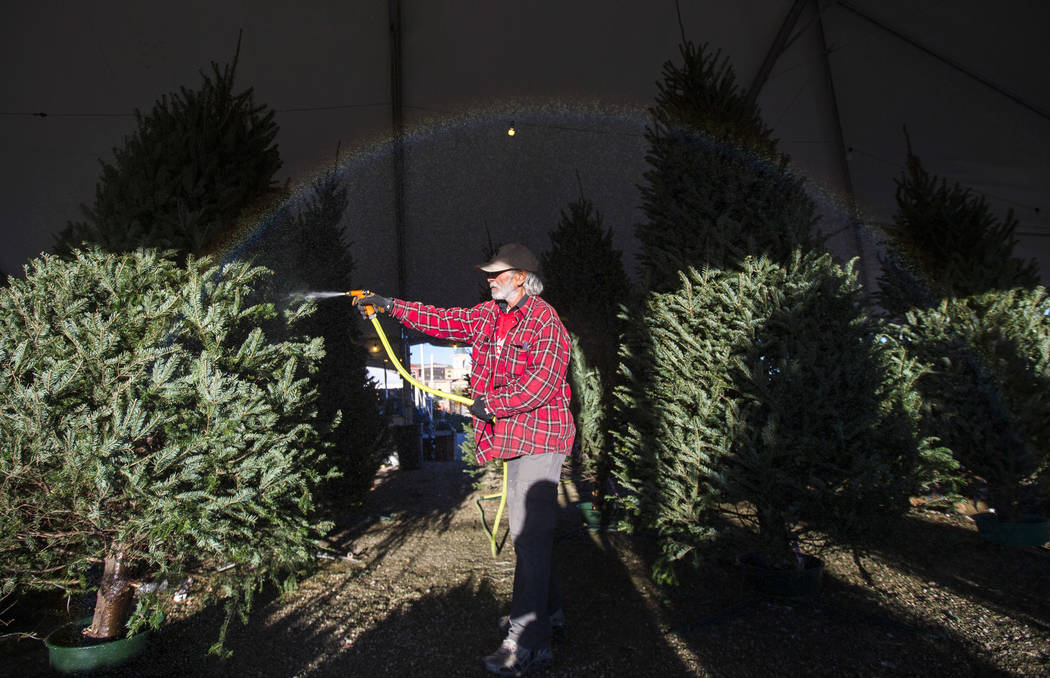 A rainbow forms over an employee hydrating trees on display at Rudolph's Christmas Trees located at 510 S. Rampart Boulevard in Las Vegas on Wednesday, Dec. 12, 2018. Richard Brian Las Vegas Revie ...