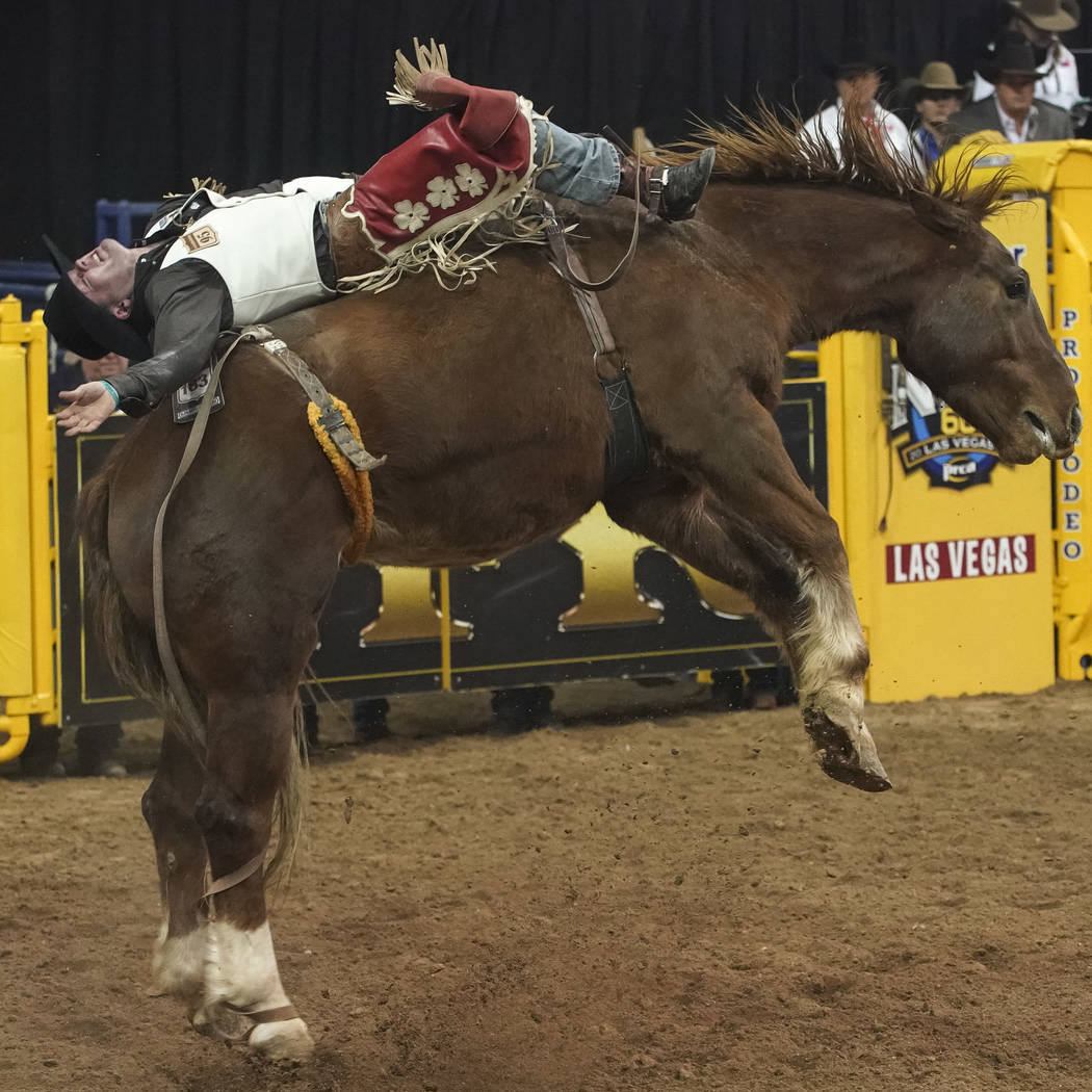 Shane O'Connell of Rapid City, S.D. competes in the bareback riding event during the eighth go-round of the National Finals Rodeo at the Thomas & Mack Center in Las Vegas on Thursday, Dec. 13, ...