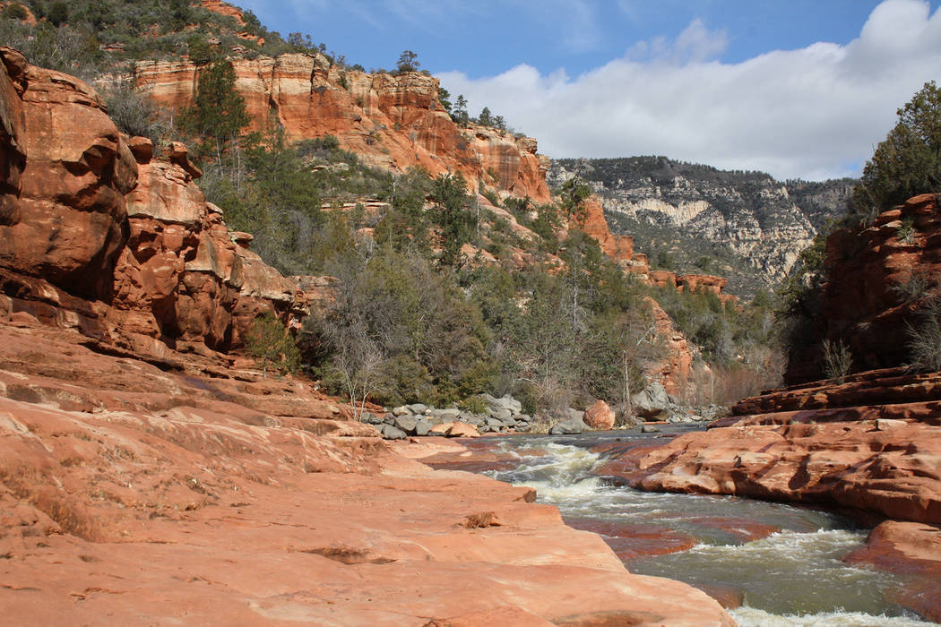 Deborah Wall Slide Rock State Park is in Oak Creek Canyon, just north of Sedona, Arizona.