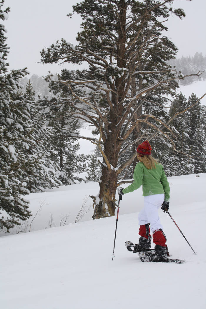 Besides Lake Tahoe's 12 downhill resorts there are many other outdoor activities to take part in such as ice skating, snowmobiling, sledding and snowshoeing. (Deborah Wall/Las Vegas Review- ...