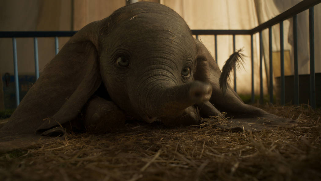 "EARS TO YOU – In Disney's all-new, live-action feature film ""Dumbo,"" a newborn elephant with oversized ears make him a laughingstock in an already struggling circus. Bu ..."