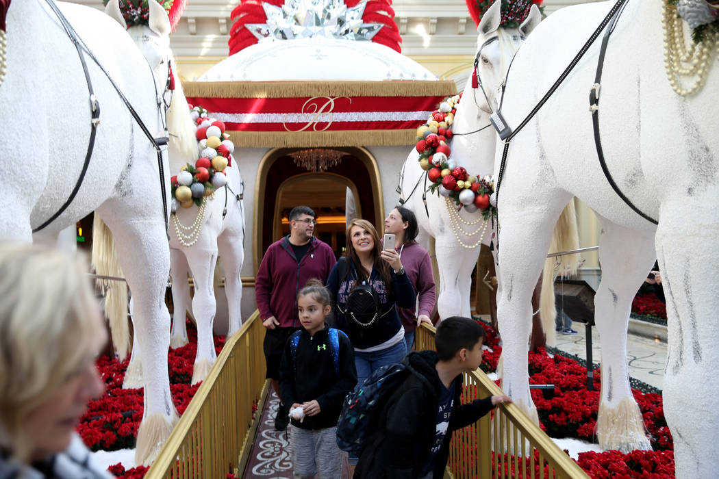 Michelle Munoz and her children Melanie, 7, and Beto, 9, of Scottsdale, Ariz., check out the Majestic Holiday Magic at the Bellagio Conservatory & Botanical Gardens in Las Vegas Friday, Dec. 2 ...