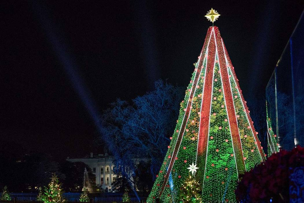 Christmas In Dc.Man Climbs National Christmas Tree In Washington Dc Las