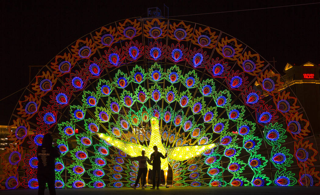 A couple poses for a photo in front of a giant peacock display at the Global Winter Wonderland lantern festival at the Rio in Las Vegas on Wednesday, Dec. 19, 2018. Richard Brian Las Vegas Review- ...