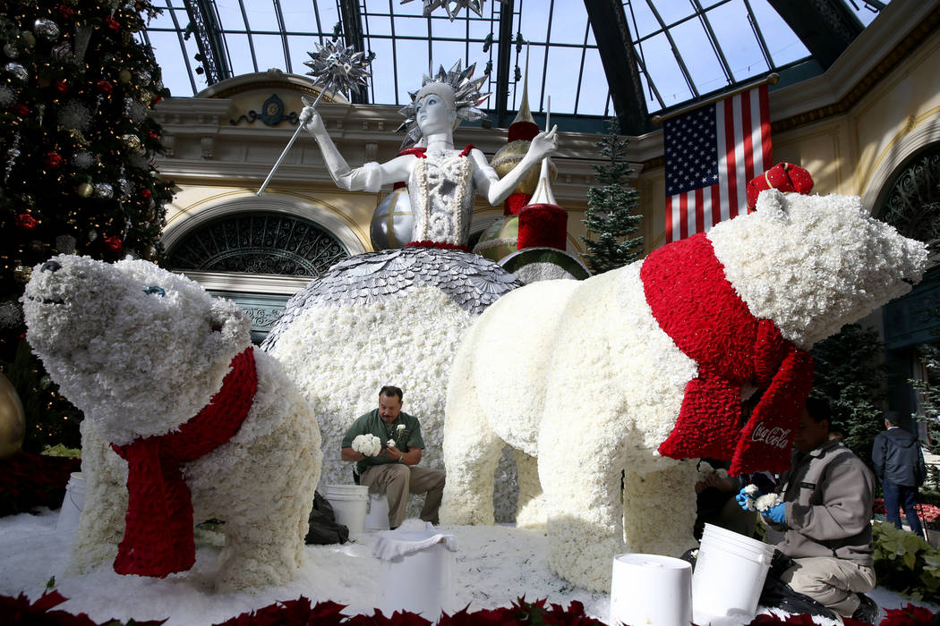 Conservatory gardeners Luis Ruiz, left, and Silvestre Calderon load fresh flowers to Majestic Holiday Magic at the Bellagio Conservatory & Botanical Gardens in Las Vegas Friday, Dec. 21, 2018. ...