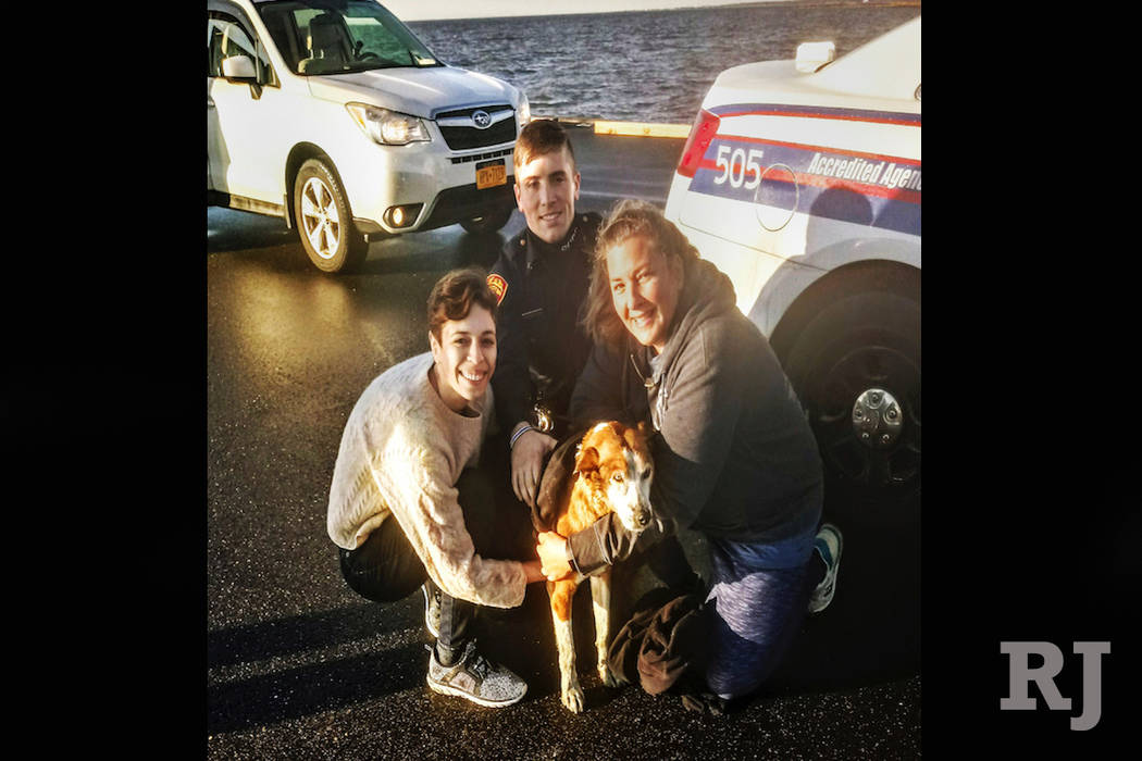 In this photo provided by the Suffolk County Police Department, rescuers pose with a hound mix named Wilbur after the dog was pulled from the chilly waters of the Great South Bay in West Sayville, ...