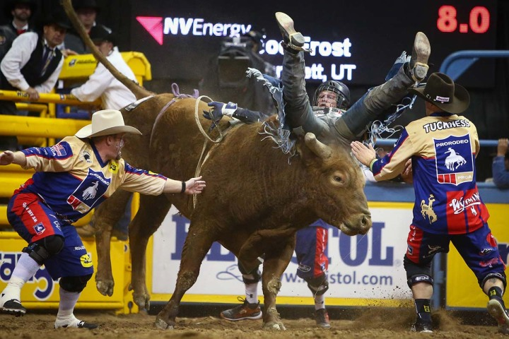 Nfr National Finals Rodeo Rodeo 2018 Las Vegas