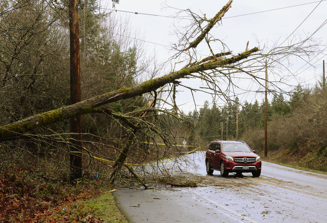 Caution tape marks a nearly downed tree next to Old Pacific Highway near Nisqually, Wash., Sunday, Jan. 6, 2019, as Puget Sound Energy reported more than 200,000 customers were without power throu ...