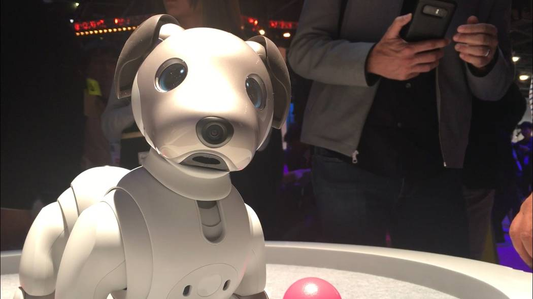Sony's robot dog Aibo at CES in Las Vegas on Tuesday, Jan. 8, 2019. Michael Scott Davidson/Las Vegas Review-Journal