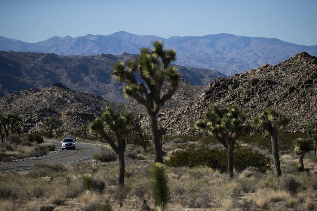 Many parks near Las Vegas remain open despite government shutdown