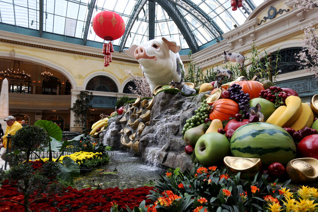 A 12 foot high pig at the west bed of the Chinese New Year Year of the Pig display at the Bellagio Conservatory at the Bellagio in Las Vegas, Monday, Jan. 14, 2019. Rachel Aston Las Vegas Review-J ...