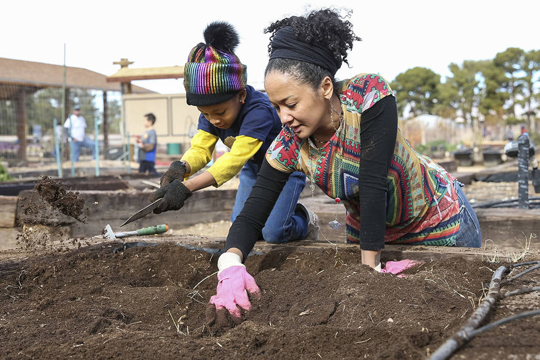 Volunteers Essence Hornick, 7, and her mother, Portia, stir up soil in a garden bed in preparation for early spring planting during a volunteering event at the San Miguel Community Garden located ...