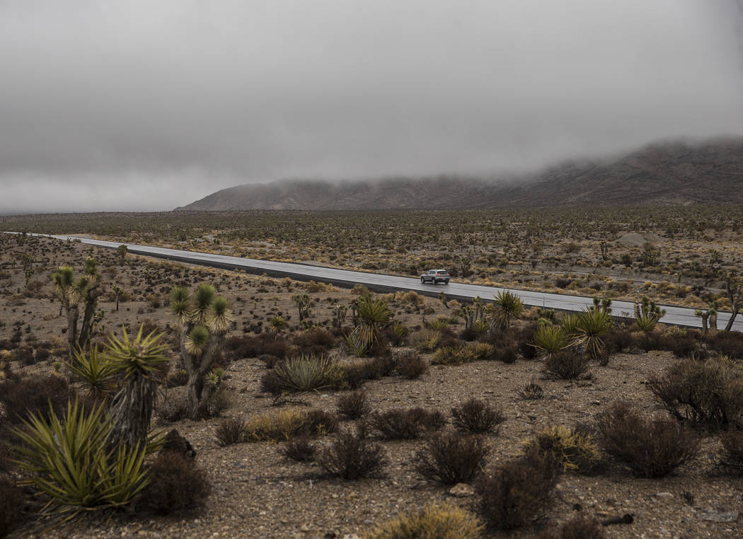 Vehicles drive north east on Lee Canyon Road in thick fog on Tuesday, Jan. 15, 2019, in Las Vegas. Benjamin Hager Las Vegas Review-Journal