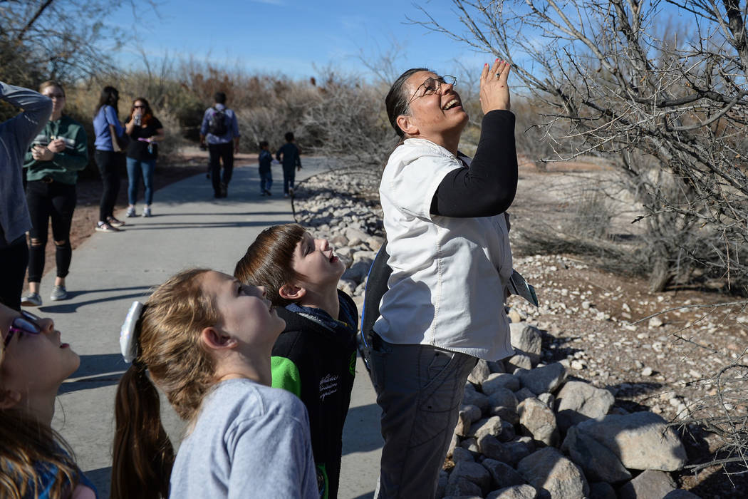 A group of children gathered for the Young Explorers event lead by Recreation Assistant Kate Bloomfield look up at a nest in a tree at the Las Vegas Wetlands Park in Las Vegas, Sunday, Jan. 27, 20 ...