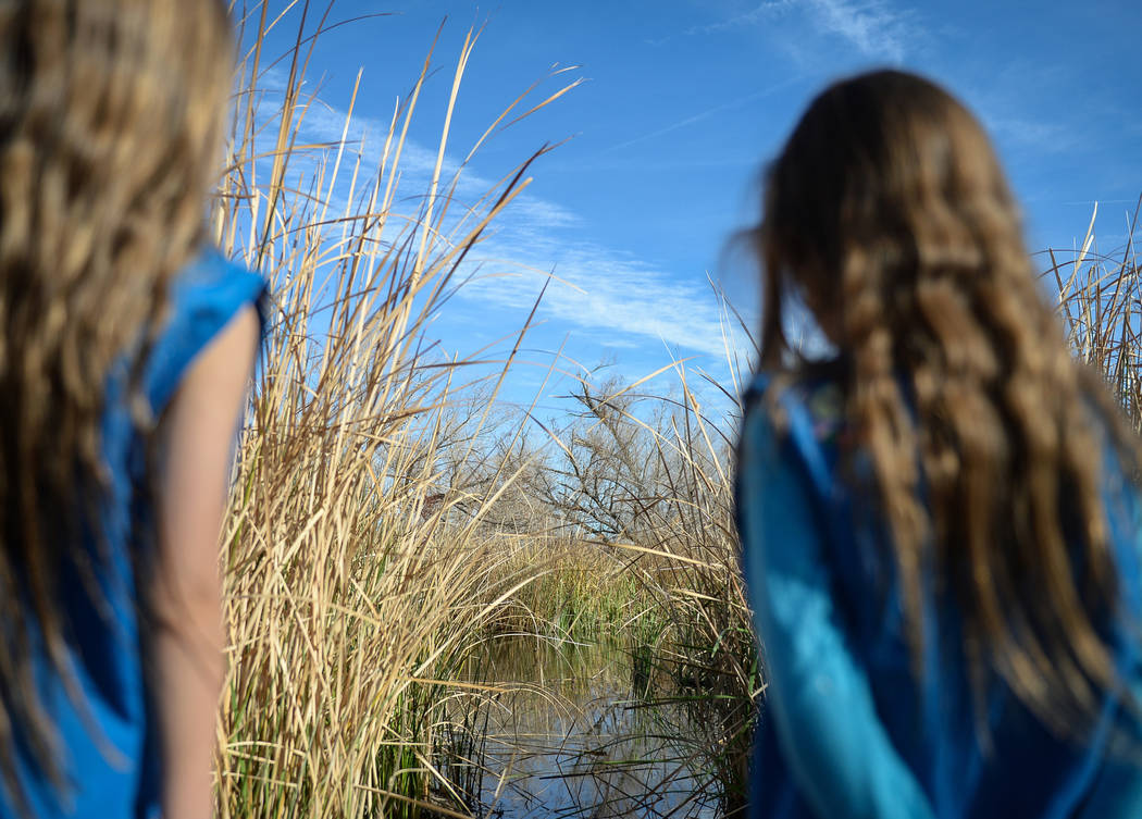 Raquel Burkhead, 6, and Sofia Burkhead, 5, look out at some wetlands as they go on a walk as part of the Young Explorers event at the Las Vegas Wetlands Park in Las Vegas, Sunday, Jan. 27, 2019. C ...