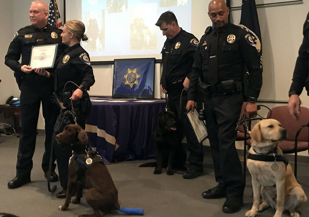 Clark County School District K-9 officers sit with their handlers after being sworn in on Thursday, Jan. 24, 2019, at police headquarters, 120 Corporate Park Drive in Henderson. (Max Michor/Review ...