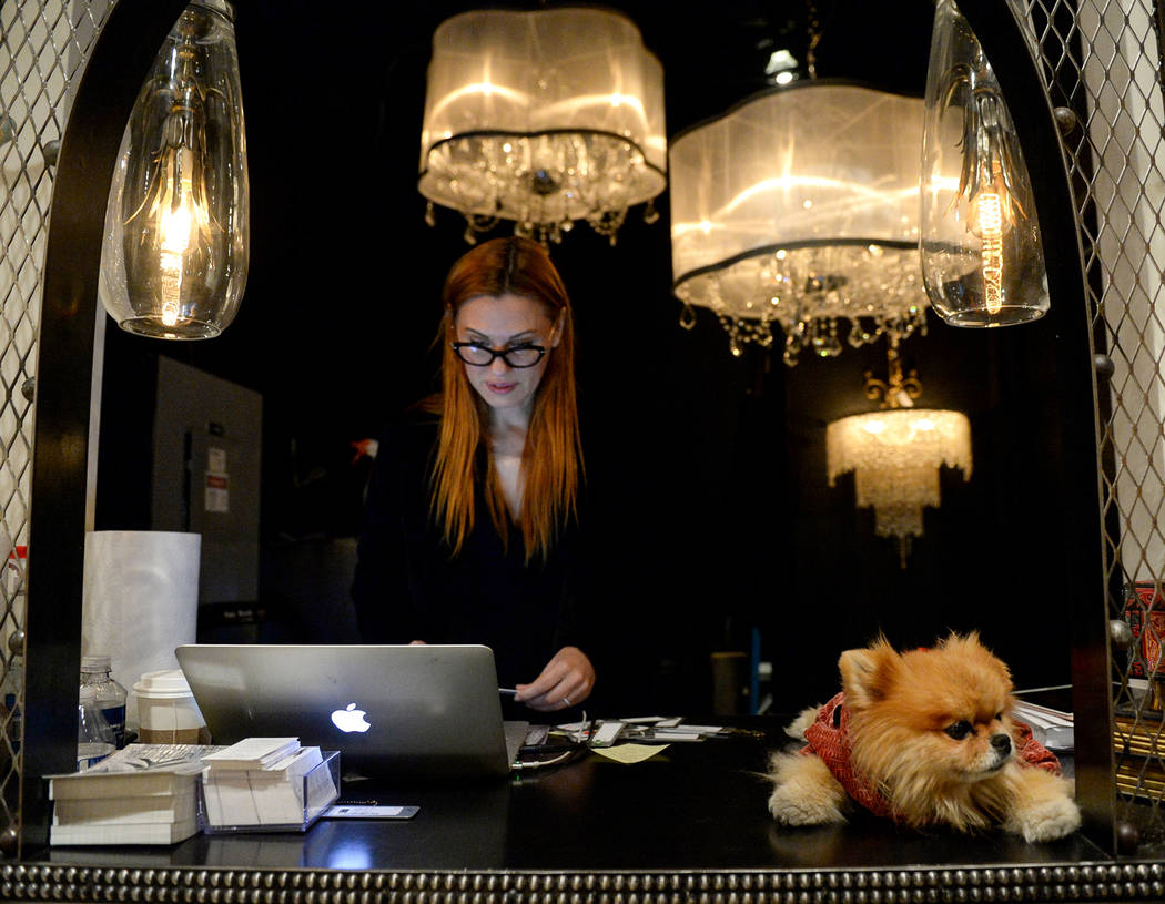 Elena Alain works at her laptop as she stands next to Puffy, Lisa Vanderpump's dog, at the Nick Alain exhibit during the opening day of the Las Vegas Winter Market held at the World Market Center ...