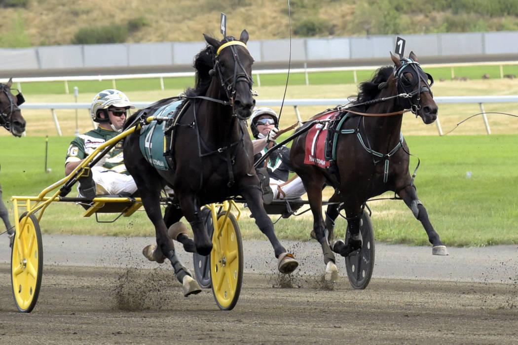 Strange harness race highlights sport's parimutuel betting problem